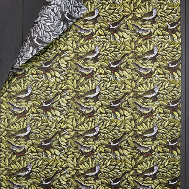 Bird Giftwrap (AH)