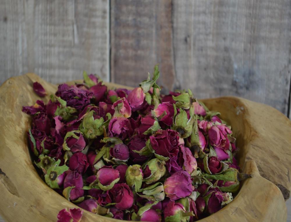 Scarlet Rose Buds