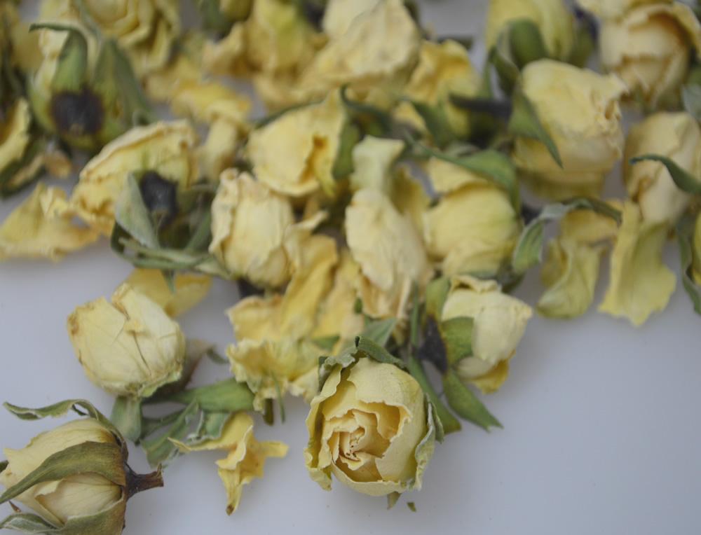 Ivory Rose Buds