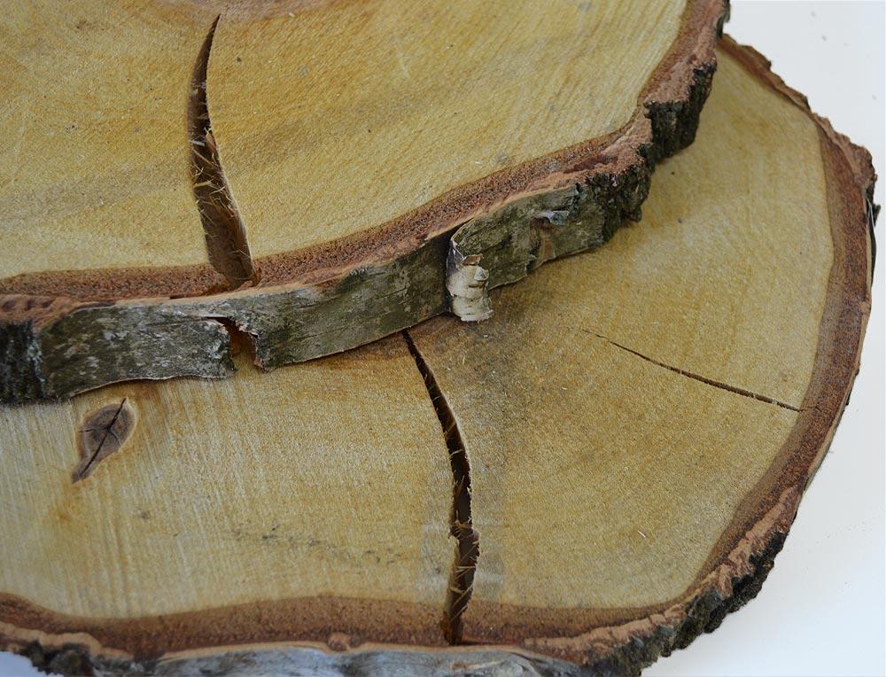 Round Birch Wood Slices 12-15cm
