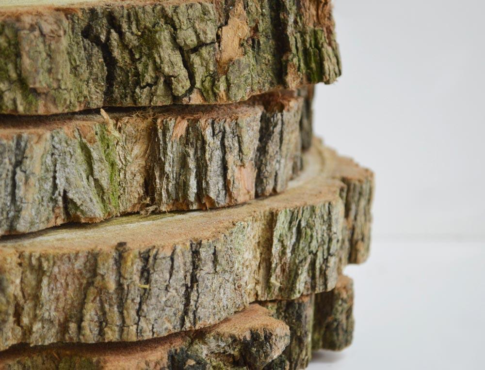Acacia Wood slice